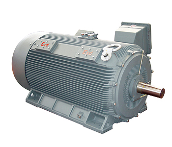ac 02 flameproof motor